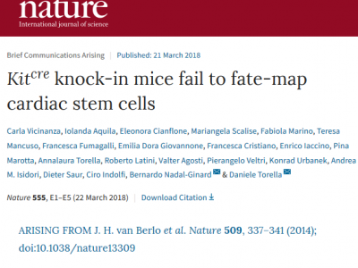 MaCCardio LAB paper published in Nature