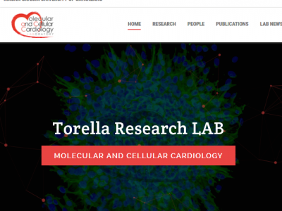 Welcome to the website of the MaCCardio LAB!